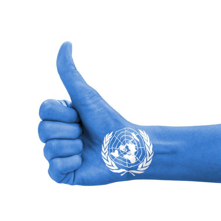 Portugal eleito para o Conselho de Direitos Humanos das Nações Unidas