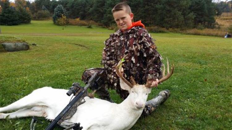 Criança com 11 anos caça um raro veado albino