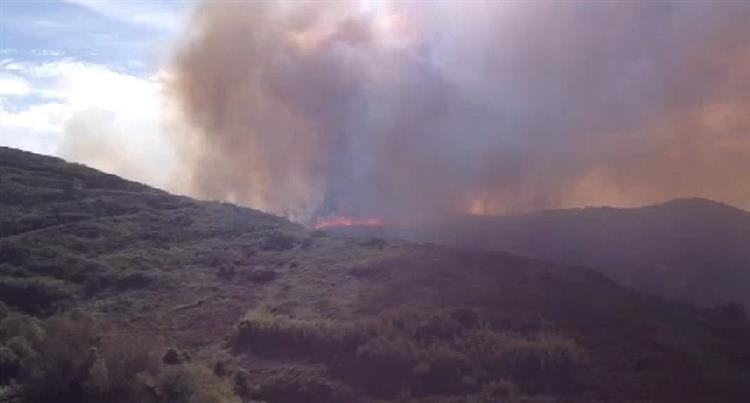 Incêndio com uma frente activa no Cabo da Roca