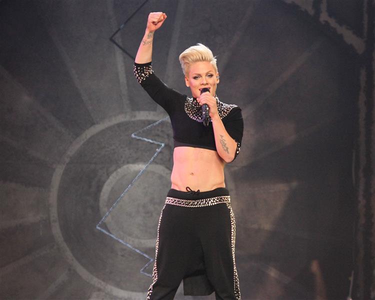 Cantora norte-americana Pink nomeada embaixadora da UNICEF
