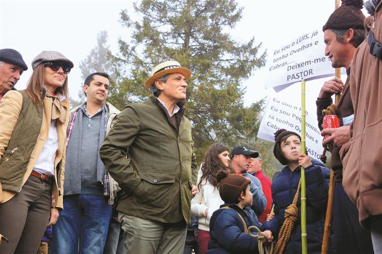 Madeira: CDS recorre a antigo líder para segurar eleitorado