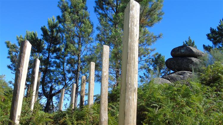 Vegetação alta a tapar sinais faz turistas perderem-se no Gerês