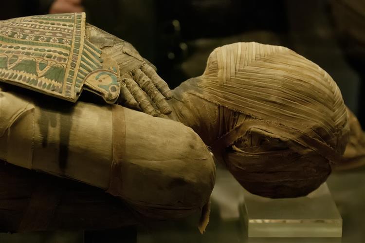 Múmias com mais de 200 anos ao serviço da medicina contra a tuberculose
