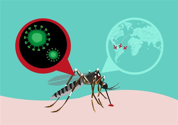 Zika. Vírus detetado em urina e saliva