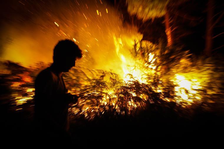 Detido homem que terá ateado mais de trinta incêndios